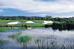 ザ・グレイズゴルフクラブ 18H 6,431Y P72 G.ノーマン設計 2000年開場