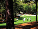 "Augusta National Golf Club 13th Hole""Azalea"""