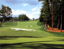 "Augusta National Golf Club 10th Hole""Camelia"""