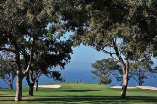 トーリーパインズゴルフクラブ サウス&ノース 36H 1957年開場 W.ベル設計